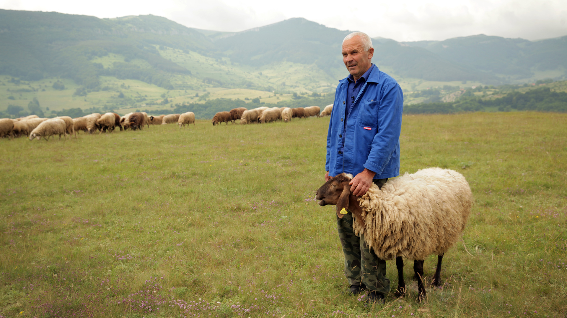 За Балкана и хората – Стоян Данаилов, фермер