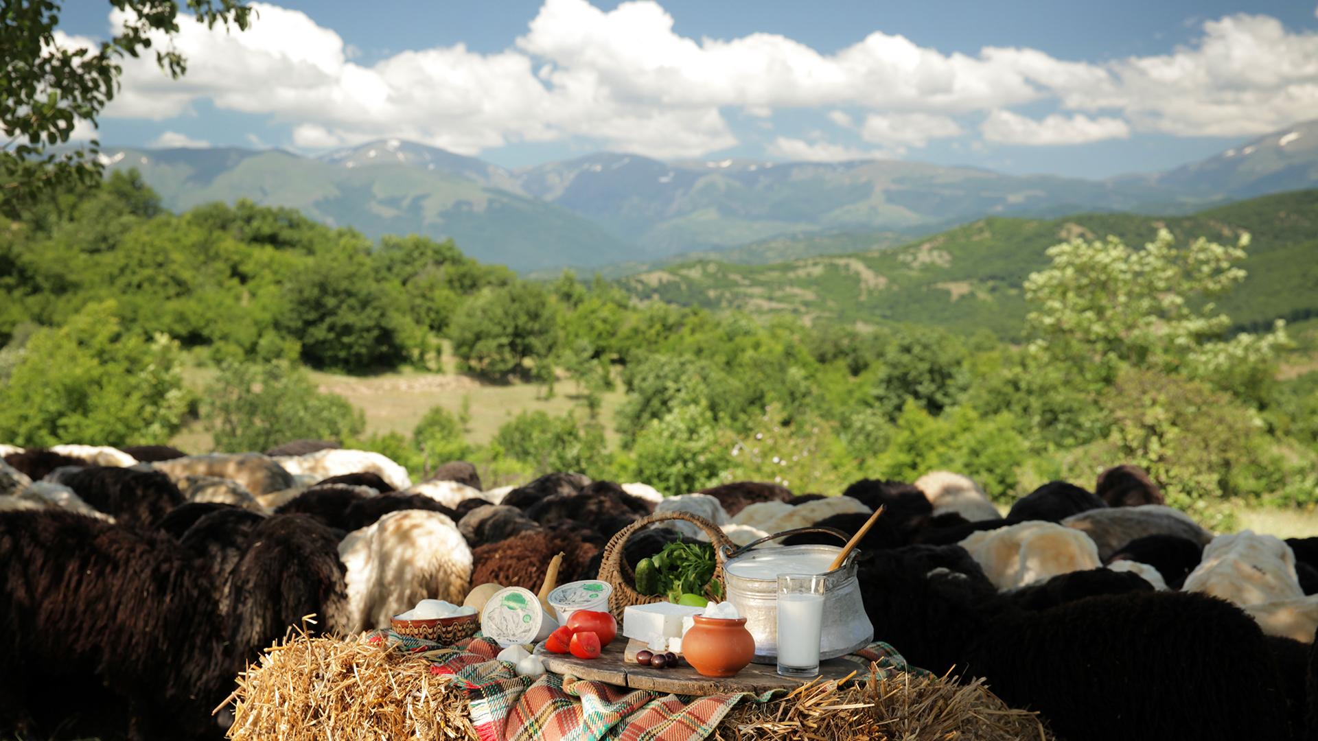 За Балкана и хората – Храна от Балкана