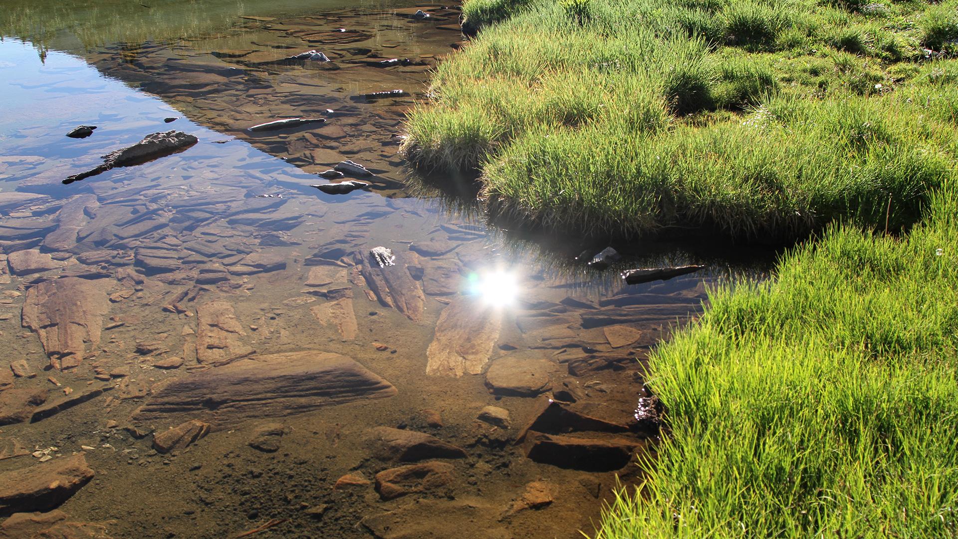 За Пирин – Бистра планинска вода